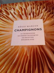 champignons_2598.jpg