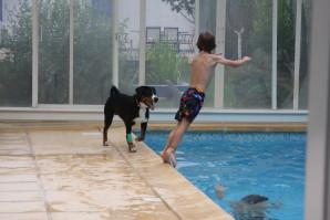 piscine F 3821